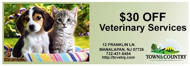 veterinarybanner